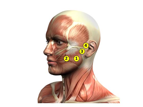 筋膜調整サロン トリガー(TRIGGER)