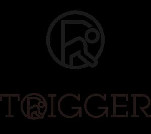 トリガースクール